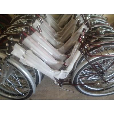 Велосипед Дорожник Аист 28 женский